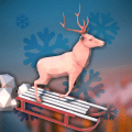Animal Adventure: Downhill Rush Icon