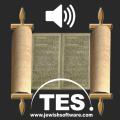 Hebrew Bible Reader Icon