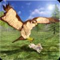 Wild Falcon Simulator 3D Icon