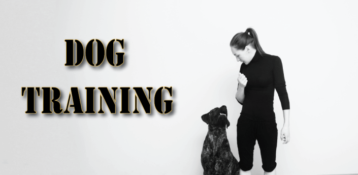 Dog and Puppy Training! exercises and tricks apk