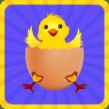 Crack the Egg chicken Icon