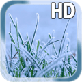 Winter Grass LWP Free Icon