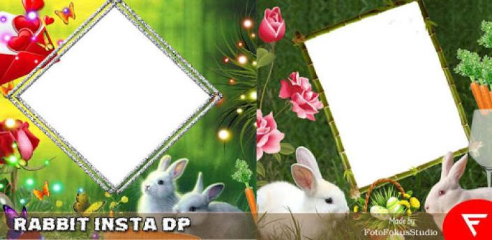 Rabbit Insta DP : Wild Insta DP apk