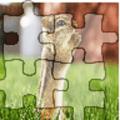 Animal Photo Puzzle. Icon