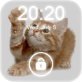 4K Cat Lock Screen Wallpaper Icon