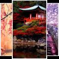 Japanese Wallpaper Icon