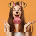 Photo Editor - Photo Effects Filter Sticker Icon
