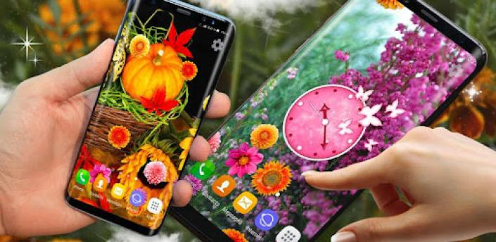 Autumn Flowers 4K Live Wallpaper ❤️ Forest Themes apk