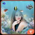 Fish Aquarium Photo Frames Icon