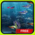 Beta Fish in 3D Live Wallpaper Icon