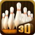 Pocket Bowling 3D Icon