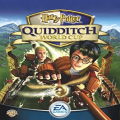 Harry Potter - Quidditch World Cup Icon