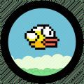 Fuckky Bird Icon
