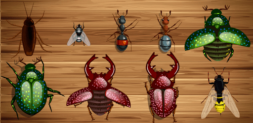 Ant Smasher - Smash Ants and Insects for Free apk