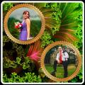 Natural Photo Frame Icon