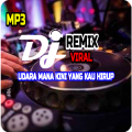 DJ Udara Mana Kini Yang Kau Hirup Remix Offline Icon