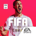 FIFA Football Icon