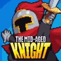 Mr.Kim, The Mid-Aged Knight Icon