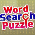 Search the words Icon