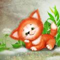 Foxy Cute Live Wallpaper Icon