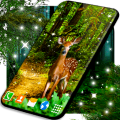 Forest Live Wallpaper 🌳 4K Wallpapers Themes Icon