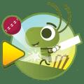 Doodle Cricket - Cricket Game Icon