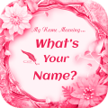 What is in your Name - What is Your Name Meaning Icon
