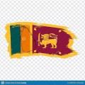 Sinhala News - Sri Lanka Icon