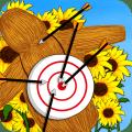Archery and Archer Icon
