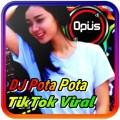 DJ POTA POTA JEDAG JEDUG REMIX TIKTOK VIRAL Icon