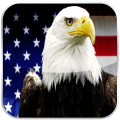 The USA Constitution Audiobook Icon