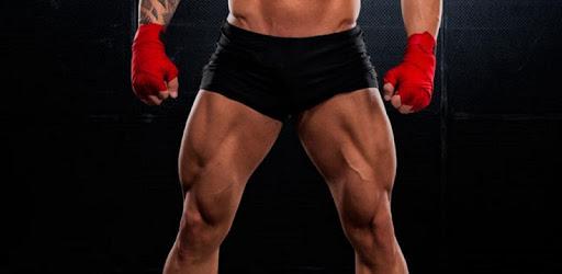 All Quadriceps exercises apk