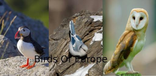 Birds Of Europe apk