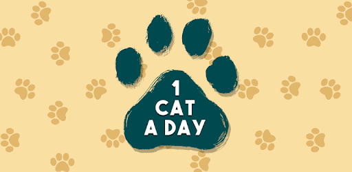 1 Cat a Day apk