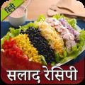 Salad Recipe in Hindi | सलाद रेसिपी Icon