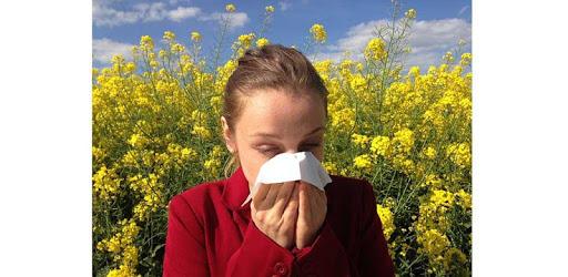Home Remedy for Allergy apk
