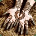Mehndi Designs - Henna Body Art Icon