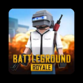Counter-Strike : Battle Guns 3D Icon