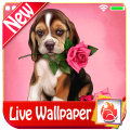 Cute Puppy Rose Live Wallpaper Puppy Dog LWP 2019 Icon