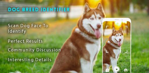 Dog breeds identifier, scanner app: Scan dogs apk