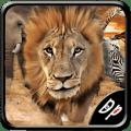 Savanna Race Icon