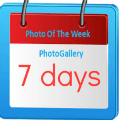 Picture of The Week Icon