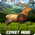 Deer Target Shooting Icon