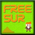Freesur 8 bit retro game Icon