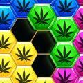 Hexa Block Puzzle Hexagon Weed Game Icon