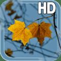Autumn LWP Icon