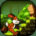 Jungle Bunny Run Icon