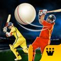 Pro Cricket Champion Icon