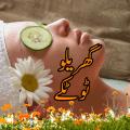 Gharelu Totkay Icon