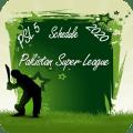 PSL 5 Schedule 2020 - Pakistan Super League Icon